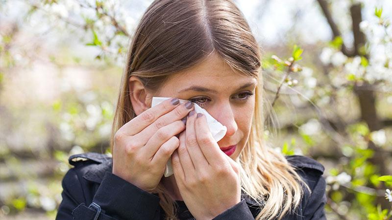 Augenallergie